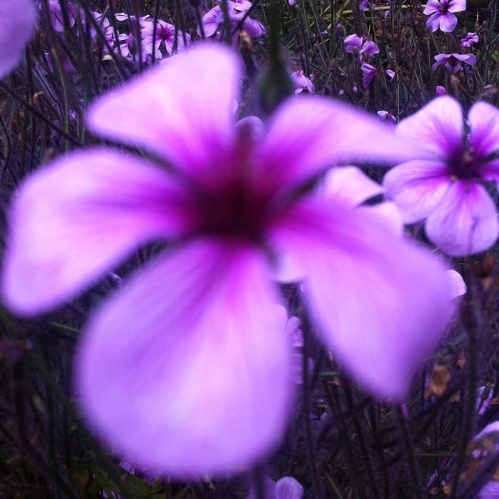 Berit Uhlhorn | Far Too Close